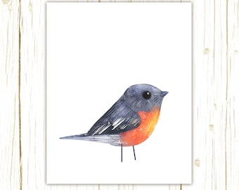 Flame Robin Print -- bird art -- colorful bird art by stephanie fizer coleman illustration