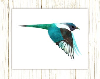 Black-Billed Magpie Print -- bird art -- colorful bird art by stephanie fizer coleman illustration
