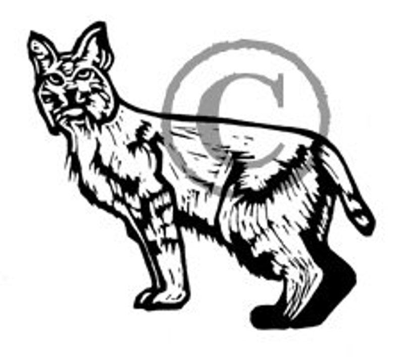 California Bobcat Rubber Stamp