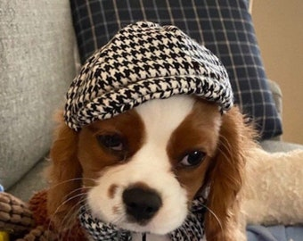 Extra Small or Small dog newsboy cap (hat)
