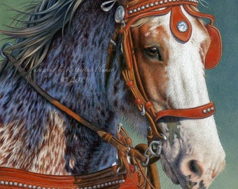 11 by 14 Limited Edition Print - Rosebud - Red Roan Clydesdale Horse in Harness