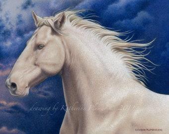 "Lusitano Stallion 9x12"" limited edition print ""Luminous"""