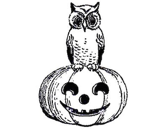 CLEARANCE Vintage owl on jack-o-lantern halloween Party Rubber Stamp