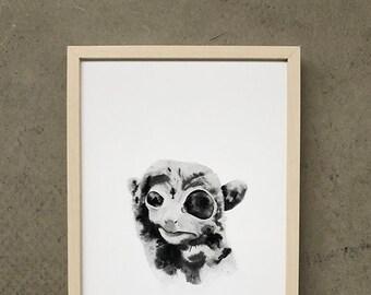 Tarsier 2 - *limited-edition* Art Print