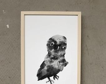 Owl - *limited-edition* Art Print