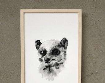 Possum - *limited-edition* Art Print
