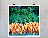 Kitchen Art Food Photography - Bunched Carrots and herbs in Farmers Market in Provence France 12x12 18x18 22x22 photograph wall home decor
