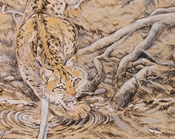 Lynx cat framed original art drawing in Conté