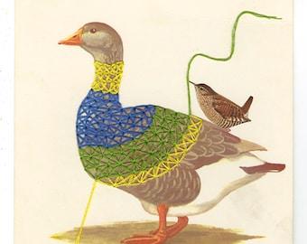 Wrens take a gander at dressing a goose. Original collage by Vivienne Strauss.