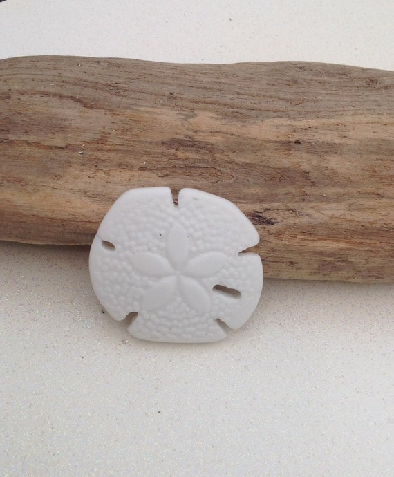 YOU PICK COLOR 1 Piece Frosted Sea Glass Finish Large Sand Dollars