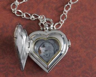 Sugar Glider in Silver Heart Locket Necklace - Polymer Clay Art