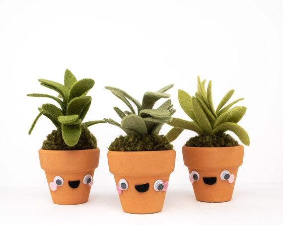 Tiny plant guy