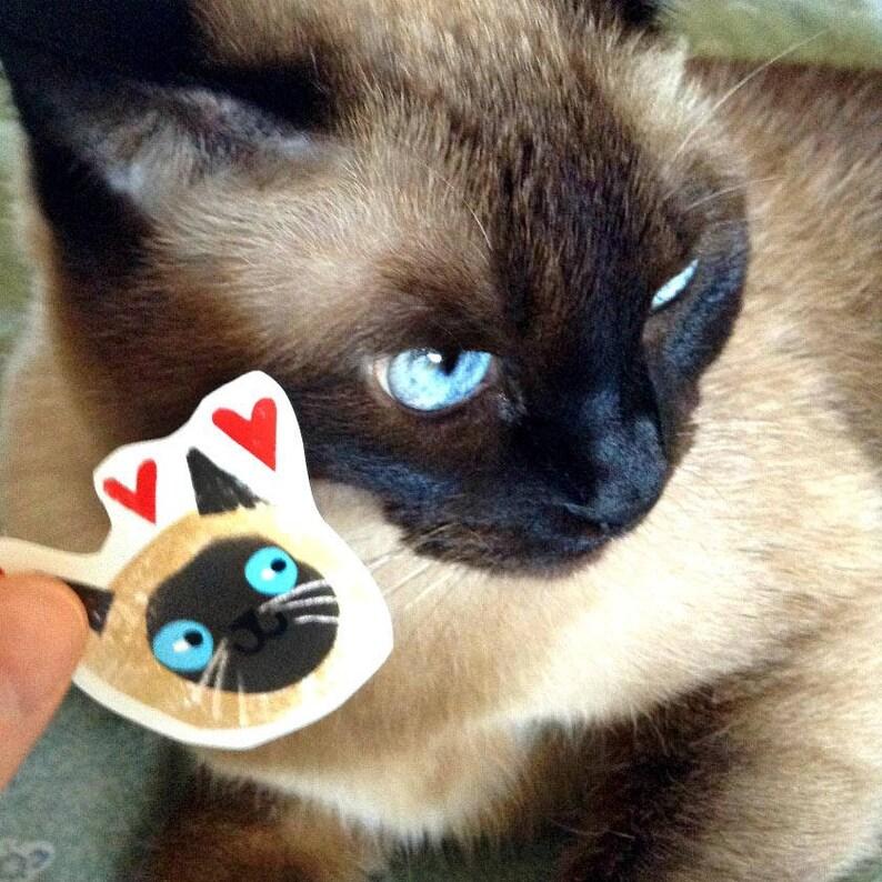 Gatto Siamese Adesivi Fun Pack Di Adesivi Gatto Faccia Emoji Etsy