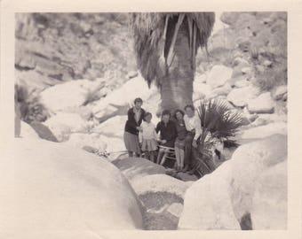 Family Vacation - Original Found Photograph, Vintage Photo, Old Photo, Family photo, Photography, Vacation Photo