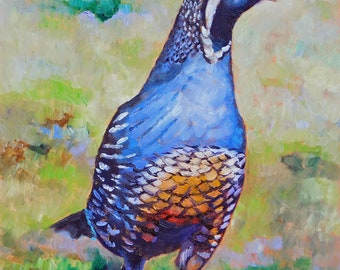 """Original California Quail Oil Painting 8""""x10"""" painted by hand in the USA"""