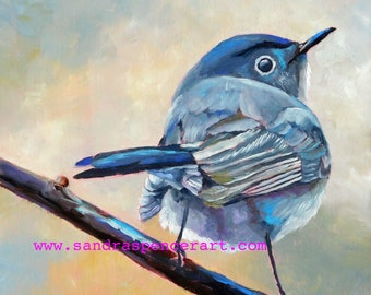 """Original Gnatcatcher Bird Oil Painting 8""""x8"""" painted by hand in the USA"""