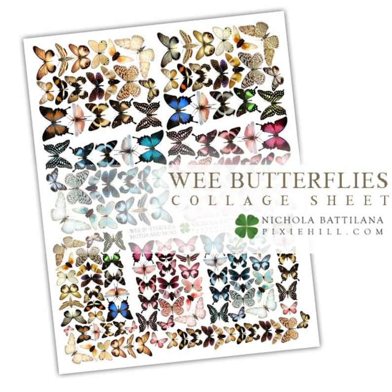Wee Assorted Butterflies Downloadable PDF Collage Sheet image 0