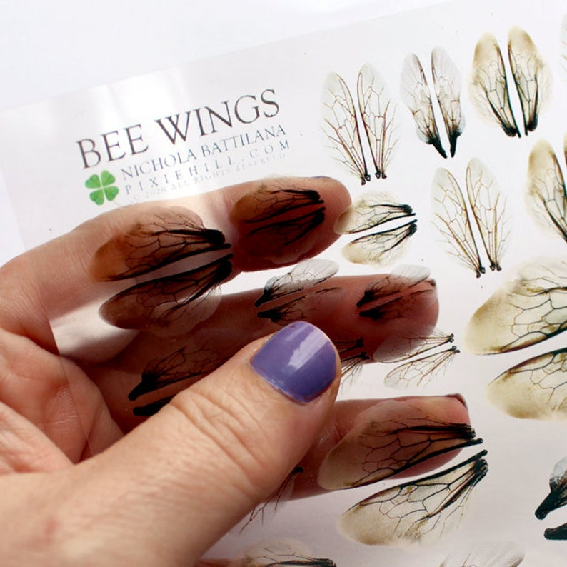 Printed Bee Wings on Transparency Collage Sheet image 0