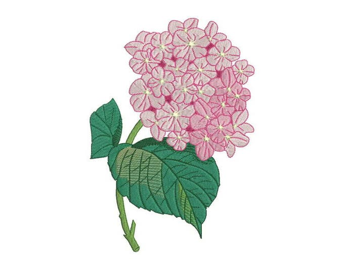 Machine Embroidery Vintage Hydrangea Machine Embroidery File design 5 x 7 inch hoop