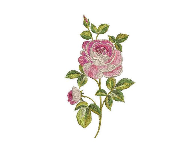 Rose Embroidery - File design 5 x 7 inch hoop - Silhouette - Shabby Chic Rose Stem- Machine embroidery
