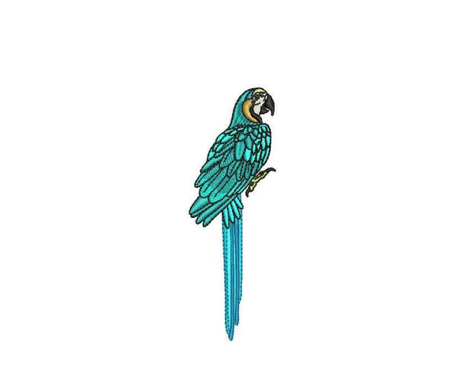 Machine Embroidery Blue Macaw Machine Embroidery File design 4x4 inch hoop