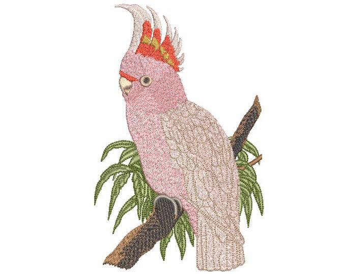 Australian Cockatoo Pink Bird - Machine Embroidery File design - 5x7 hoop - Fauna Embroidery Design