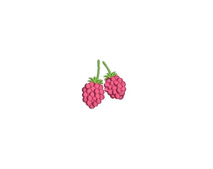 Kawaii Raspberries Mini Machine Embroidery File design 4 x 4 inch hoop Raspberry