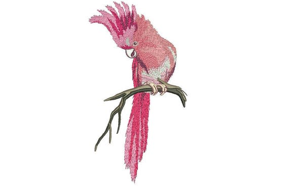Australian Pink Cockatoo Bird Machine Embroidery File design 5x7 hoop