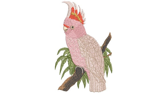 Australian Cockatoo Pink Bird - Machine Embroidery File design - 5x7 hoop - Fauna Embroidery Design