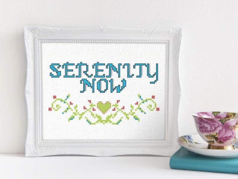 Serenity Now Funny Cross Stitch Pattern Seinfeld Beginner Cross Stitch  Pattern Modern Cross Stitch Pattern Subversive Embroidery