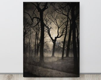 Into The Trees, Black and White Fine Art Photography, Eerie Night, Grungy, Forest Print, Spooky Woods, GOTH Photo, Back lit, Tree Silhouette