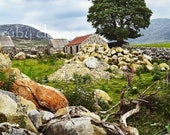 Silent Valley Cottage, Mourne MOUNTAINS, Co. Down, Northern IRELAND, Idyllic Landscape,Irish Photo, St. Patrick 39 s Gift,Pub Decor,Ireland Art
