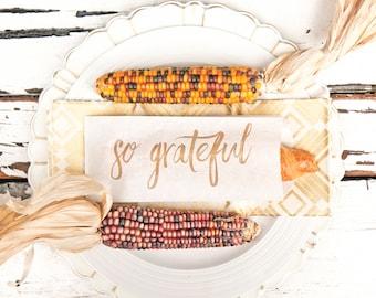 Thanksgiving Dinner Table Setting Decor - SO GRATEFUL - Thanksgiving Holiday Hostess - Bread or Silverware Bag - Packs of 5 white Bags