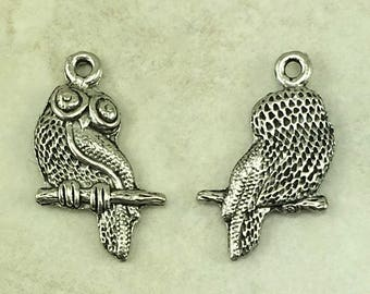 Owl Charm > Harry Potter Pigwidgeon Owl Post Bird of Prey Wise - Raw Lead Free Pewter Silver Made in USA - I ship Internationally