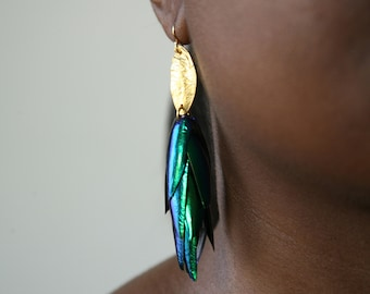 The Body that Remains - Fancy Beetle Wing Gold  Tone Earrings