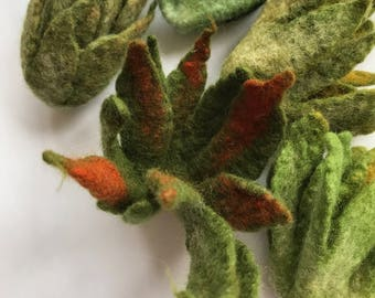 Hand Felted AIR PLANT, Home Decor, Fiber, Textile, Green, Natural, Organic