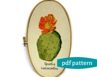 Prickly Pear Cactus Counted Cross Stitch Pattern PDF Download - Botanical Print - DIY Needlepoint - Pattern Download