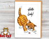 5x7 Cat Greeting Card HELLO LADY- blank inside