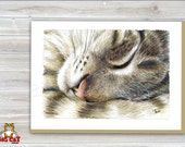 Cat Greeting Card  TUCKERED sleeping tabby cat - 5x7 size. Handmade note card signed by the artist- blank inside