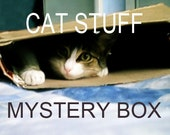 CAT LOVERS Mystery Box - Lots of cat goodies for cat lovers !  Cat themed blind box.  Cat Grab bag.  Cat Stuff for People.