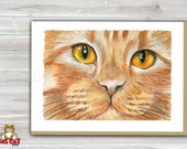 5x7 Cat Greeting Card  ORANGE TABBY FACE- blank inside