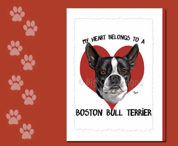 Boston Bull Terrier Card Boston Terrier Greeting Card Boston Etsy