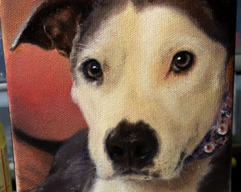 CUSTOM Dog Portrait Oil Painting, Puppy Pet Portrait Drawing on Canvas or Panel all sizes cute realistic style