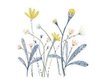 Botanical illustration - Garden - archival art print
