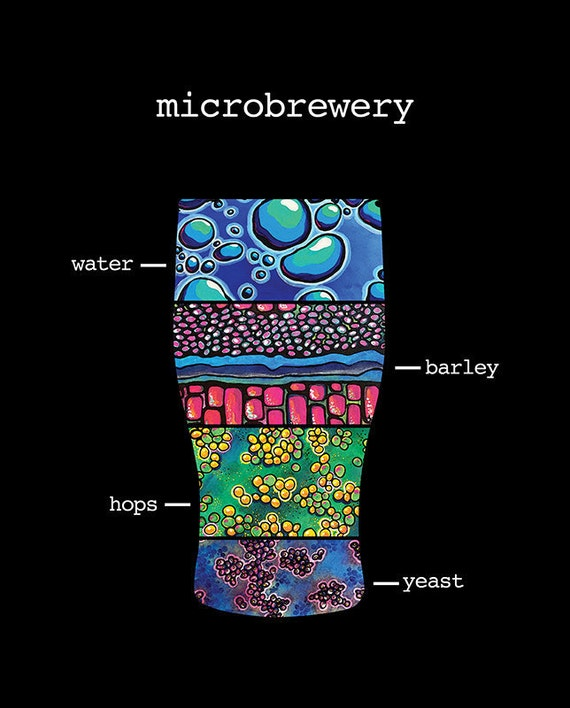 BEER GIFTS microbrewery ingredients poster - yeast, barley, hops, water 16x20