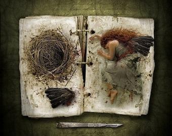 Fantasy Art Print Dark Fairy Tales, The Wing Collector