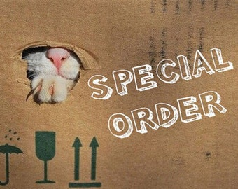 Special Order for Jessica Only