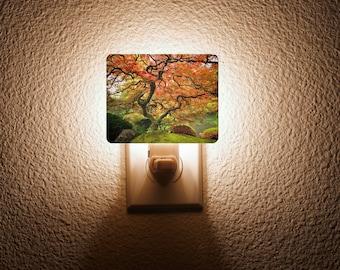 Japanese Maple Night Light
