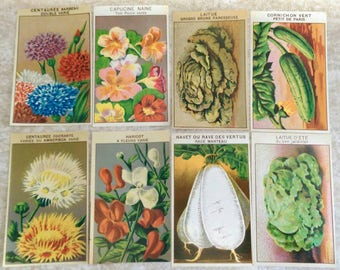 8 Different Full Color Flower + Vegetable French Seed Packet Labels