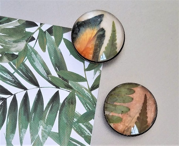 Botanical Plant Magnets - Office Magnets - Locker Magnets - Frig Magnets - Strong Magnet - 30 MM - Large Magnets - Set of 4 - FREE SHIPPING